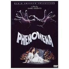 Dvd Phenomena