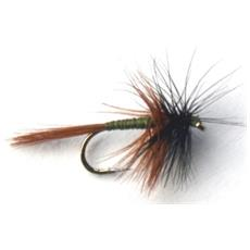 Mosca Black Brown 16 Marrone