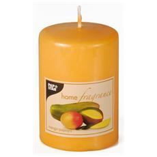 Candela Profumo di Mango-Papaya 10 cm