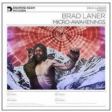 Brad Laner - Micro-Awakenings (2 Lp)