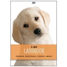 Il labrador. Con DVD