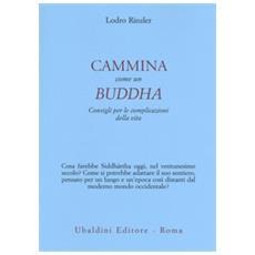 Cammina come un buddha. consigli per le complicazioni della vita