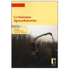 Biomasse lignocellulosiche (Le)