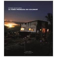La terra promessa dei Goldburt. Catalogo della mostra (Reggio Emilia, 4-27 maggio 2016) . Ediz. a colori