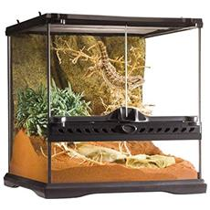 Glass Terrarium, 12 By 12 By 12-inch By