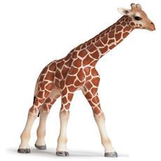 Giraffe Calf, 2,5 cm, 9,8 cm, 9 cm, Beige, Marrone