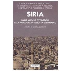 Siria. Dalle antiche citt�-stato alla primavera interrotta di Damasco