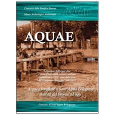 Aquae. La gestione dell'acqua oltre l'unità d'Italia nella pianura emiliana