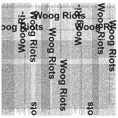 Woog Riots - From Lo-fi To Disco!