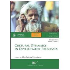 Cultural dynamics in development processes