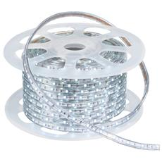 STRIP-R-5050HV-30 / F - Striscia led da 50 m 7,2 watt 6000 kelvin