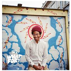 Toro Y Moi - What For (Deluxe Edition)