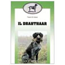 Drahthaar (Il)