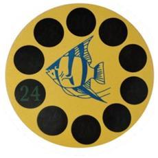 Termometro Digitale Adesivo Per Acquario