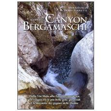 Alla scoperta dei canyon bergamaschi. Dalla Via Mala alla Forra Leonardesca, un viaggio tra le più belle gole, gli orridi e le marmitte dei giganti delle Orobie