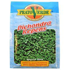 Dichondra Repens X 100 Gr