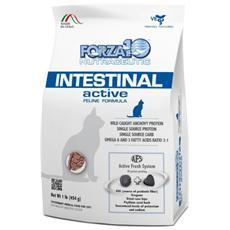 Forza10 Gatto, Dieta Intestinal Active Gr. 454