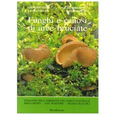 Funghi e cenosi di aree bruciate. Indagine nell'ambiente del parco