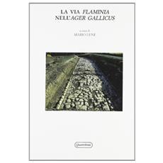 La via flaminia nell'ager Gallicus