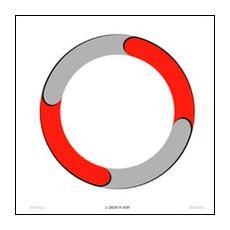 Il cerchio fa sport