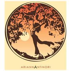 Arianna Antinori - Ariannantinori