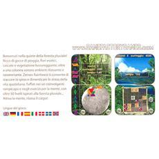 NDS - Zenses Rainforest