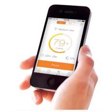 AW133 Digitale termometro per cibo