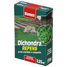 Prato Dichondra Repens 500gr