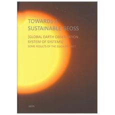 Towards a sustainable geoss. Global earth observation system of systems