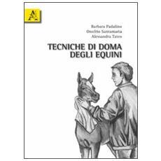 Tecniche di doma degli equini