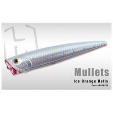Mullets Ice Orange Belly