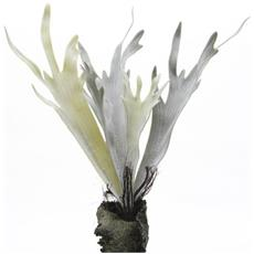 Pianta Verde Cm. 52