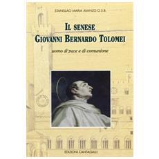 Senese Giovanni Tolomei. Uomo di pace e di comunione (Il)
