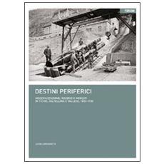Destini periferici. Modernizzazione, risorse e individui in Ticino, Valtellina e Vallese, 1850-1930