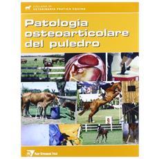 La patologia osteoarticolare del puledro