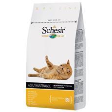 Cibo per Gatti Cat Dry Mantenimento Pollo 10 kg