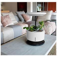 TECNOAIR SYSTEM - Macchina Per Coltura Idroponica Garden Machine...