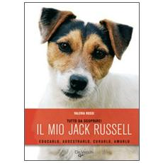 Il jack russell