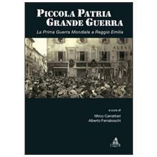 Piccola patria, grande guerra. La prima guerra mondiale a Reggio Emilia