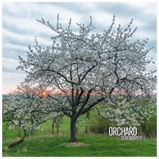 Orchard - Serendipity