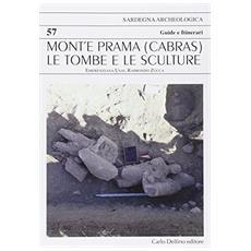 Mont'e Prama (Cabras) . Le tombe e le sculture