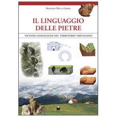 Il linguaggio delle pietre. Vicende geologiche del territorio trevigiano