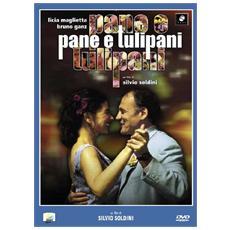 Dvd Pane E Tulipani