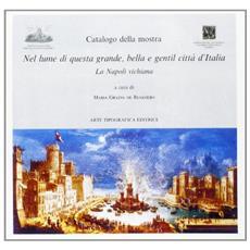 Nel lume di questa grande, bella e gentil citt� d'Italia. La Napoli vichiana