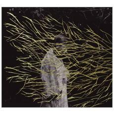 Forest Swords - Engravings (2 Lp)