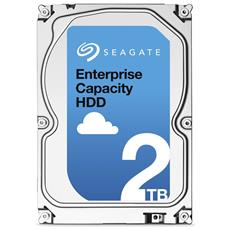 "Hard Disk Interno Enterprice Capacity 2 TB SATA 3.5"" Buffer 128 MB 7200 Rpm"