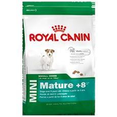 Royal Cane Maturo Taglia Piccola, Oltre 8 Anni, Kg. 2