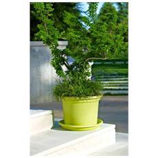 Vaso 'geo' Cm18 Verde Arredo Giardino