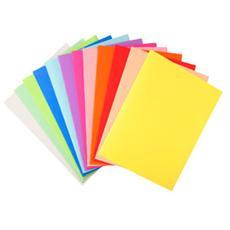 100 cartelline semplici 240gr 24x32cm mix 5 colori foldyne 250