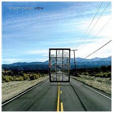 Bryan Beller - View